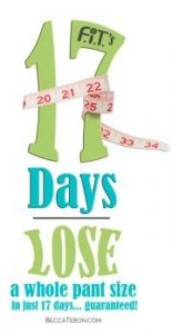 17 DAY LOGO